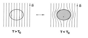 Meissner Effect ( (G. Rickayzen, Theory of Superconductivity vol. XIV: John Wiley & Sons, Inc.,1965.) �